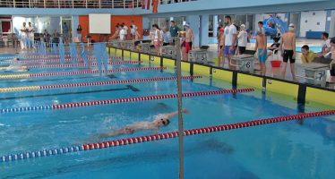 """Domaći plivači najuspešniji na trofeju """"Cara Konstantina"""""""